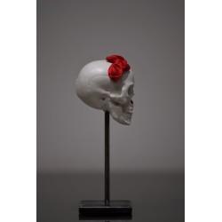 TBO - Crâne blanc avec fleurs