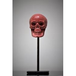 Crâne sur Piédestal